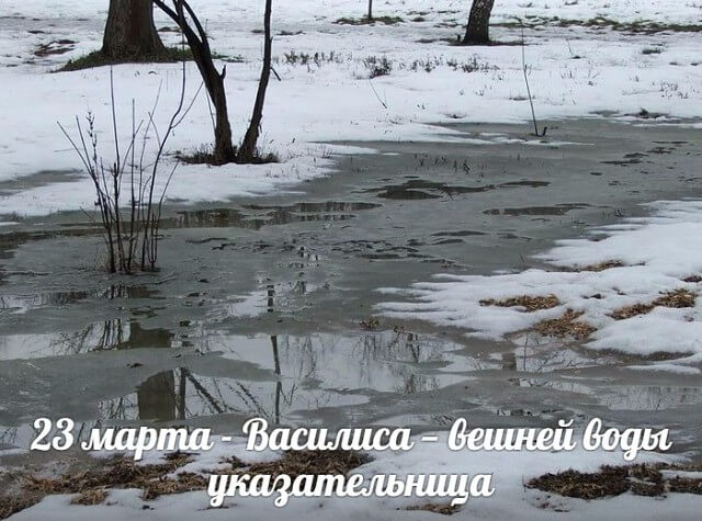 23 марта василиса поздравления картинки счастью, некоторые них