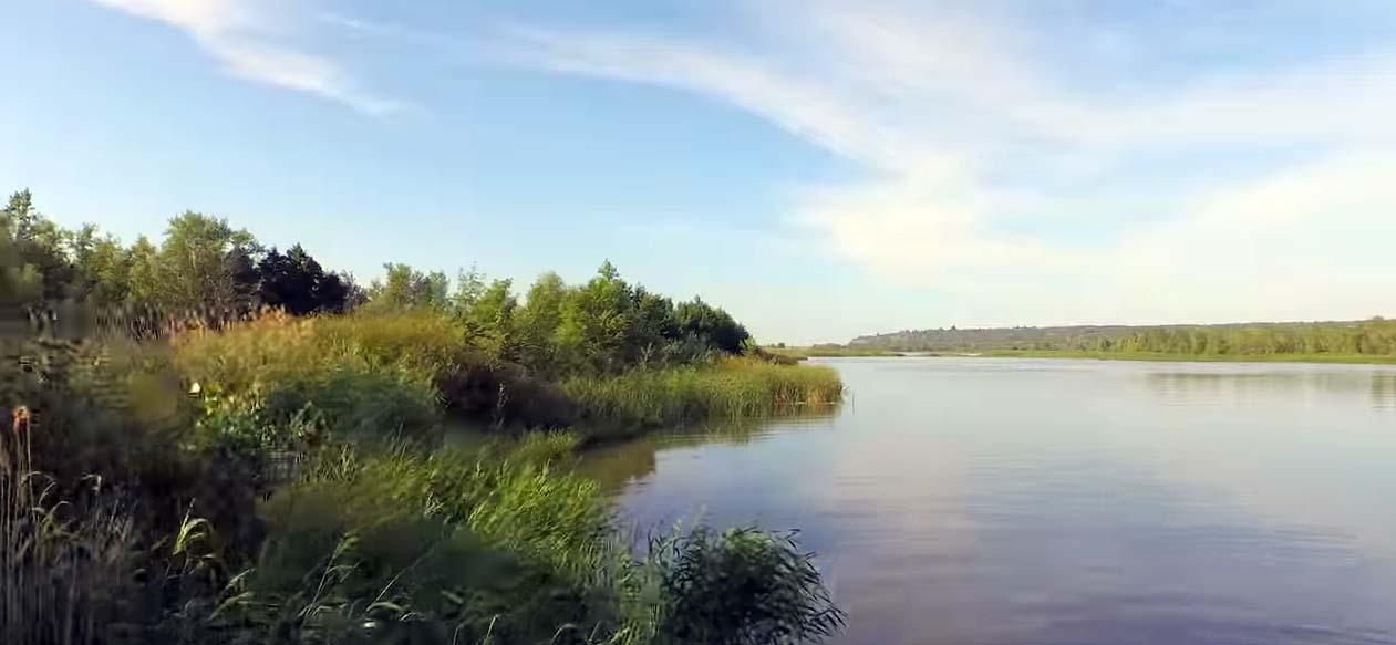Волга река от устья
